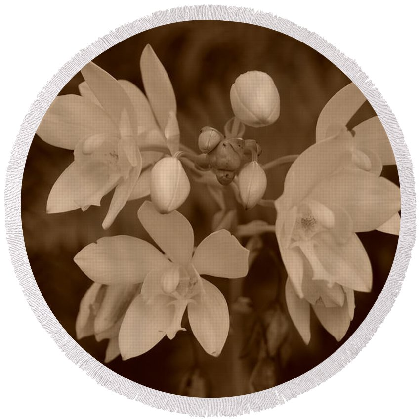 Macro Round Beach Towel featuring the photograph Sepia Flower by Rob Hans