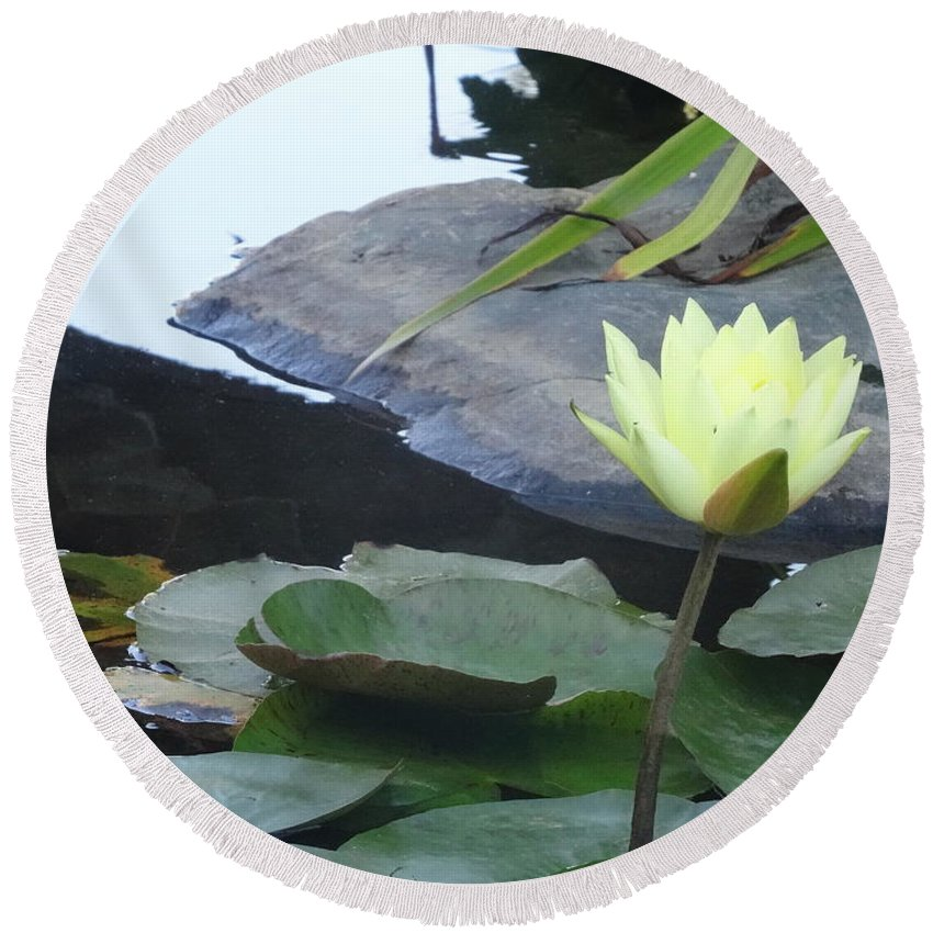 Lotus Round Beach Towel featuring the mixed media Serenity by Richard Laeton