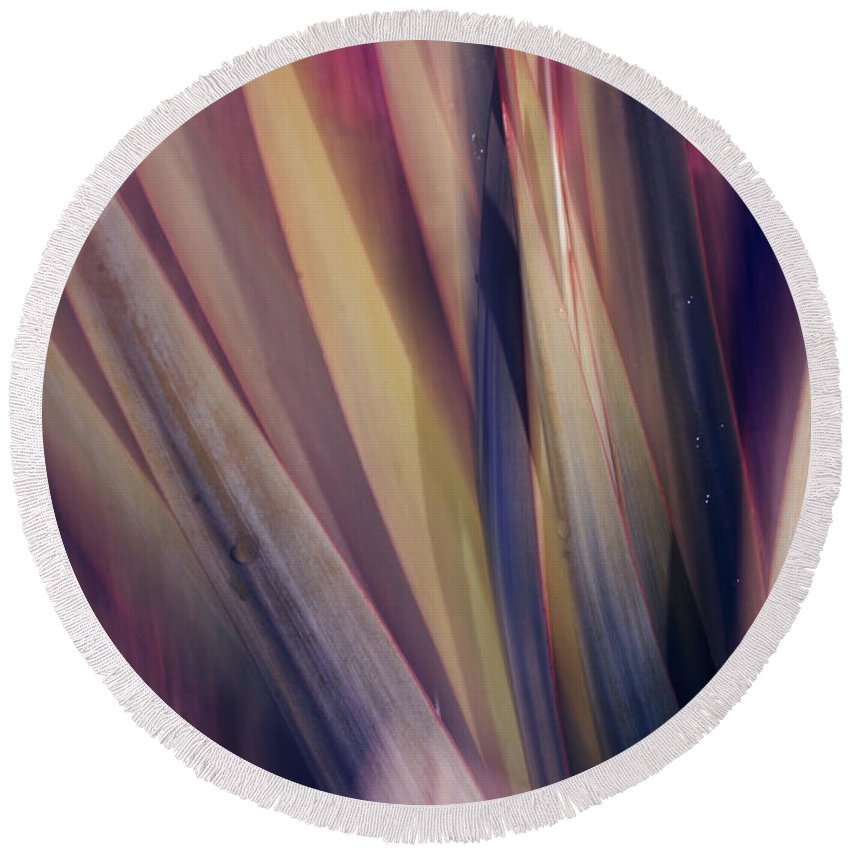 Plant Abstract Nature Blur Colors Pink Blue Yellow Geen Round Beach Towel featuring the photograph Shade Of Color by Linda Sannuti
