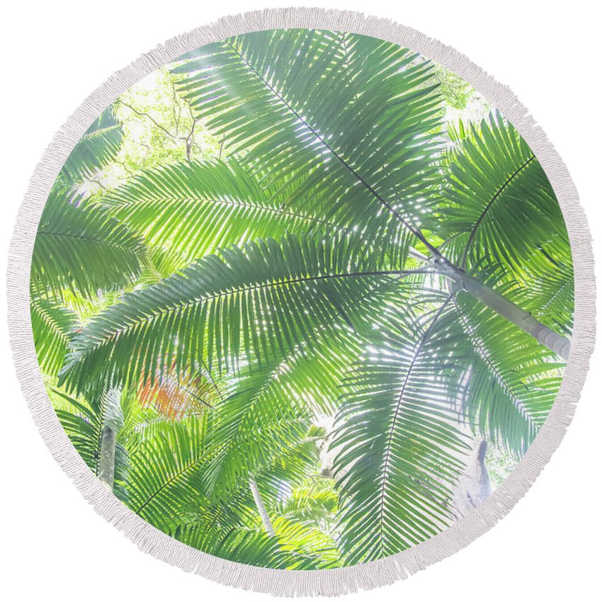 Nature Round Beach Towel featuring the photograph Shade Of Eden by Az Jackson