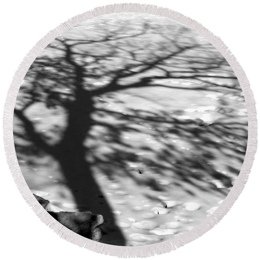 Shadow Round Beach Towel featuring the photograph Shadow Tree Herrick Lake Naperville Illinois by Michael Bessler