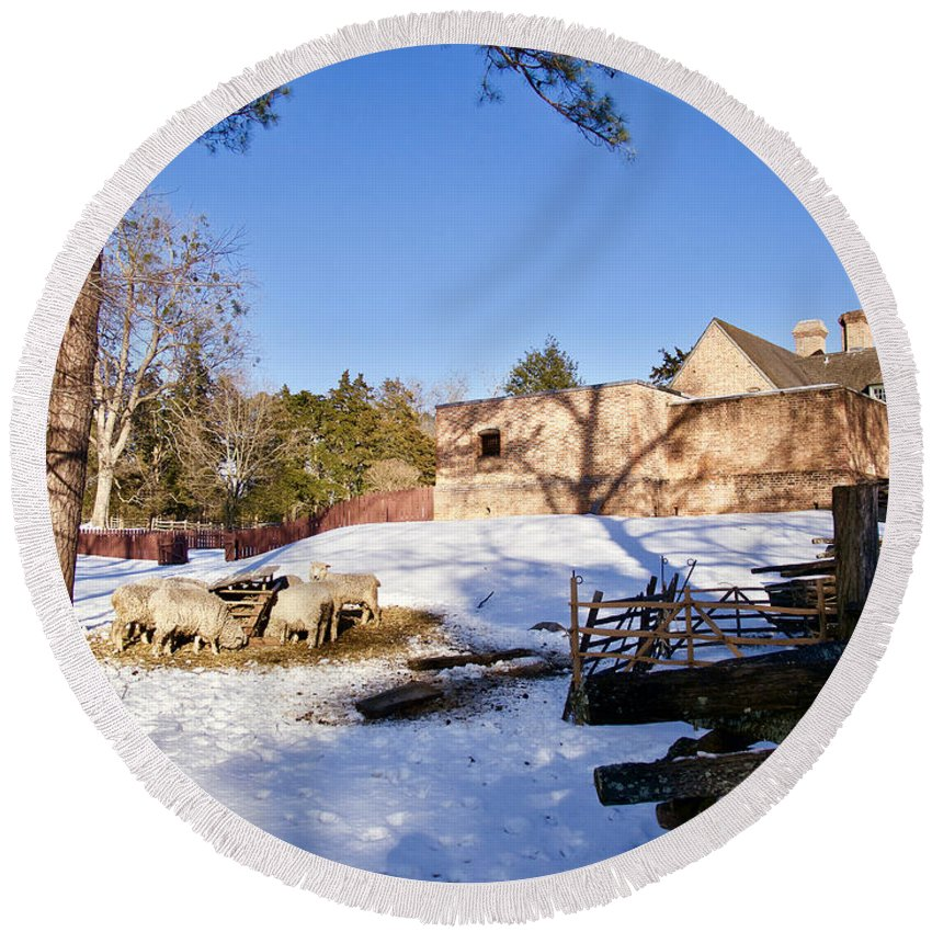 Colonial Williamsburg Round Beach Towel featuring the photograph Sheep Farm In Winter by Rachel Morrison