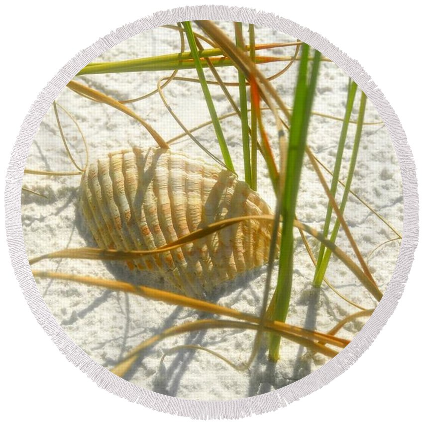 Sea Shell Round Beach Towel featuring the photograph Shell And Beach by David Lee Thompson