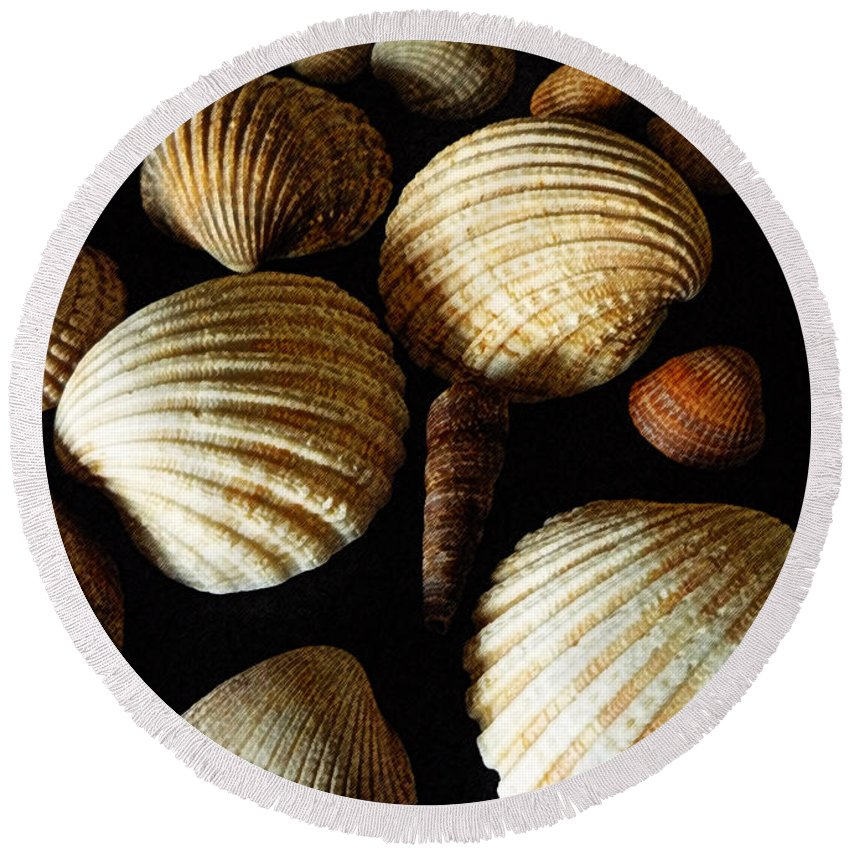 Shell Round Beach Towel featuring the mixed media Shell Art - D by P Donovan