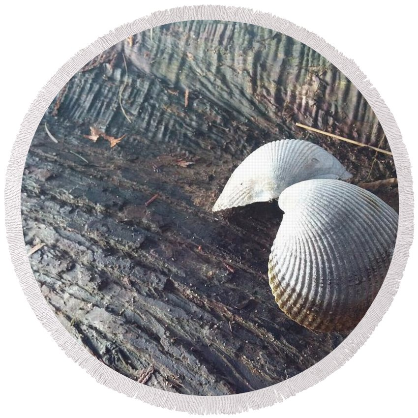 Round Beach Towel featuring the photograph Shell by Maria Verdicchio