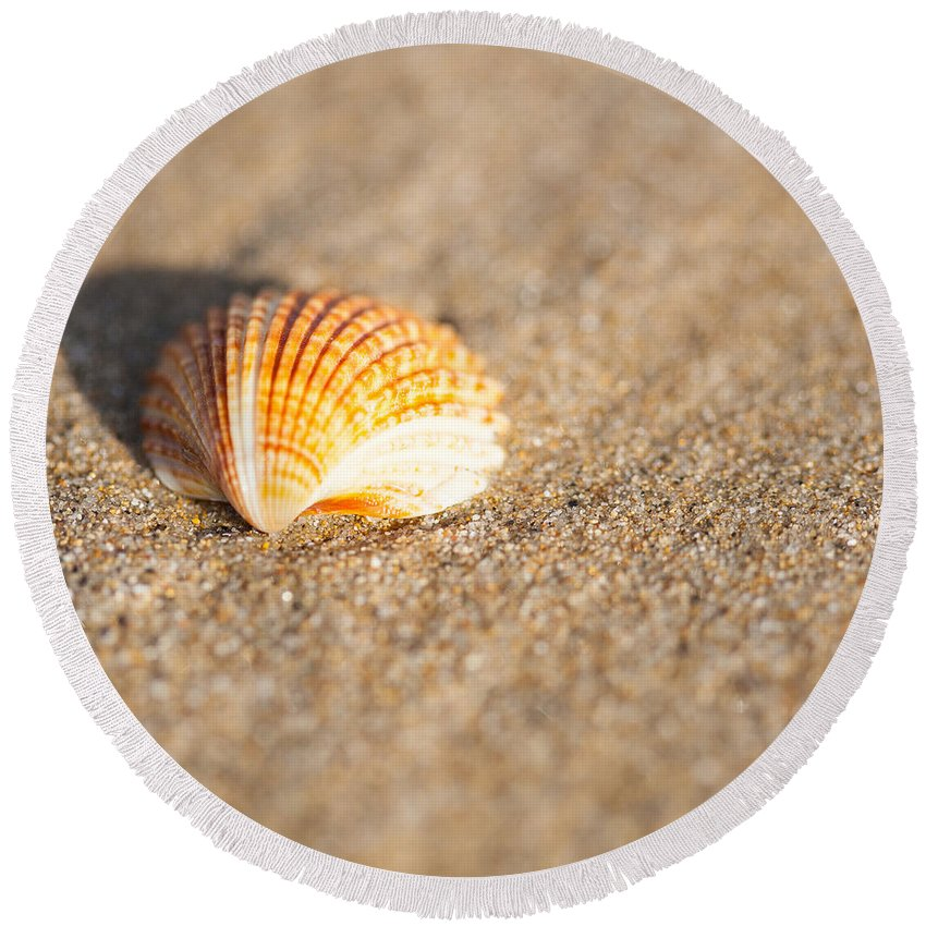 Ralf Round Beach Towel featuring the photograph Shell On The Beach 2 by Ralf Kaiser
