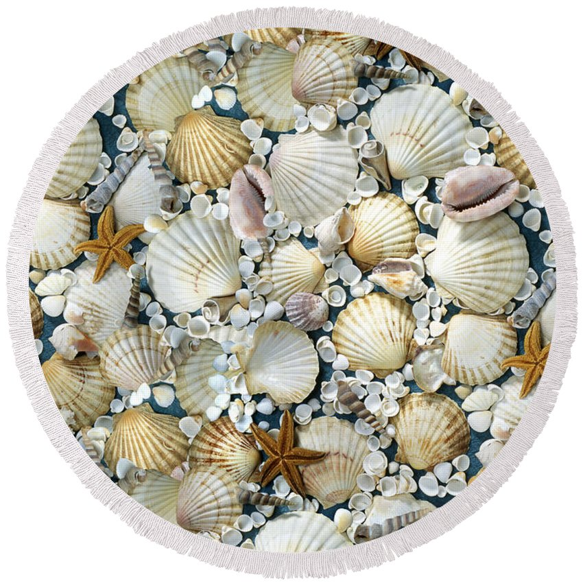 Shell Round Beach Towel featuring the photograph Shell by Patrick Hoenderkamp
