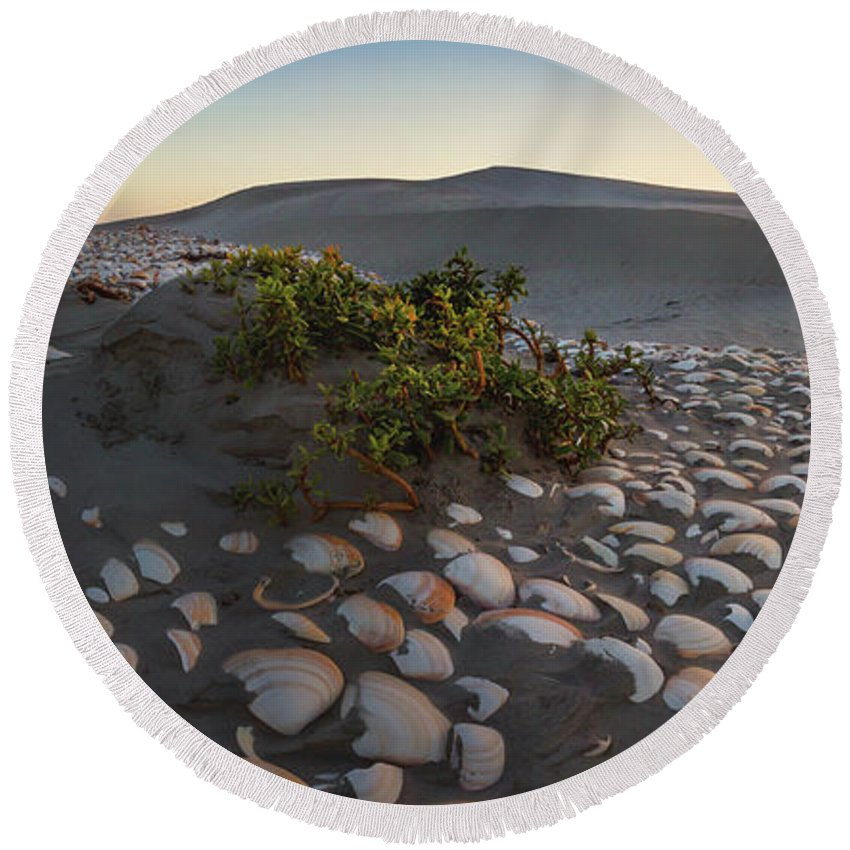 Shell Round Beach Towel featuring the photograph Shells At Desert by Josafat De la Toba