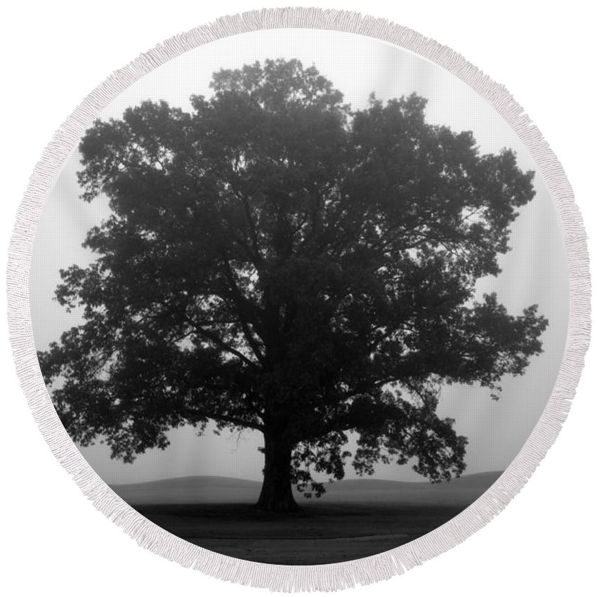 foggy Trees Round Beach Towel featuring the photograph Shelter by Amanda Barcon