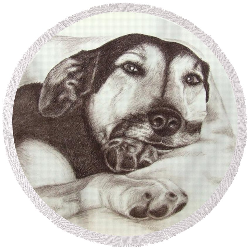 Dog Round Beach Towel featuring the drawing Shepherd Dog Frieda by Nicole Zeug