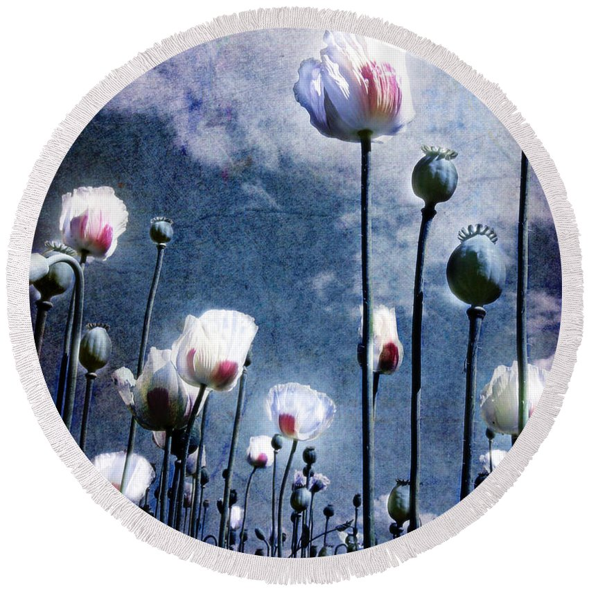 Flowers Round Beach Towel featuring the photograph Shine Through by Jacky Gerritsen