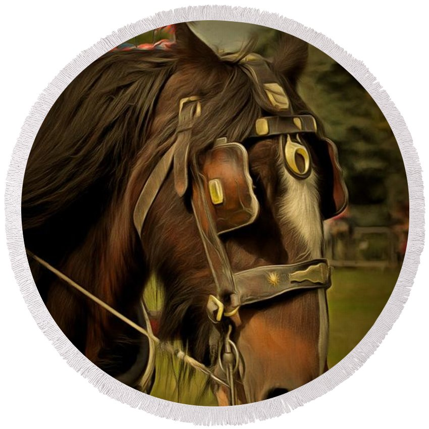 Shire Horse Round Beach Towel featuring the photograph Shire Horse by Scott Carruthers