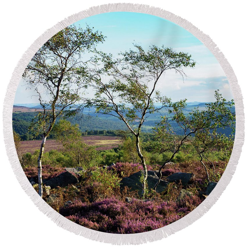 Silver Birch Round Beach Towel featuring the photograph Silver Birch At Surprise View by Tim Clark