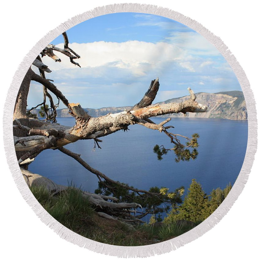Crater Lake Round Beach Towel featuring the photograph Silvery Tree Over Crater Lake by Carol Groenen
