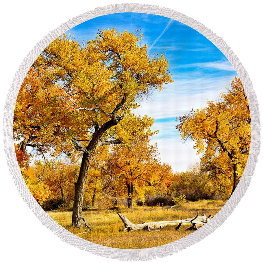 Autumn Round Beach Towel featuring the photograph Simply Autumn by Robert Meyers-Lussier
