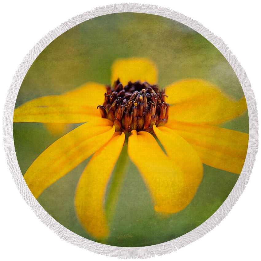 Flower Round Beach Towel featuring the photograph Simply Susan by Lois Bryan