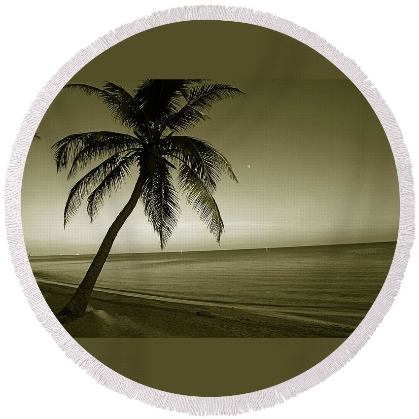 Palm Tree Round Beach Towel featuring the photograph Single Palm At The Beach by Susanne Van Hulst