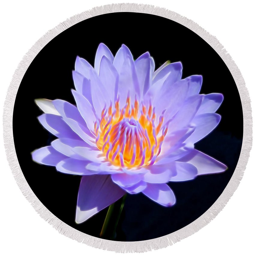 Water Lily Round Beach Towel featuring the photograph Single Water Lily by Pamela Walton