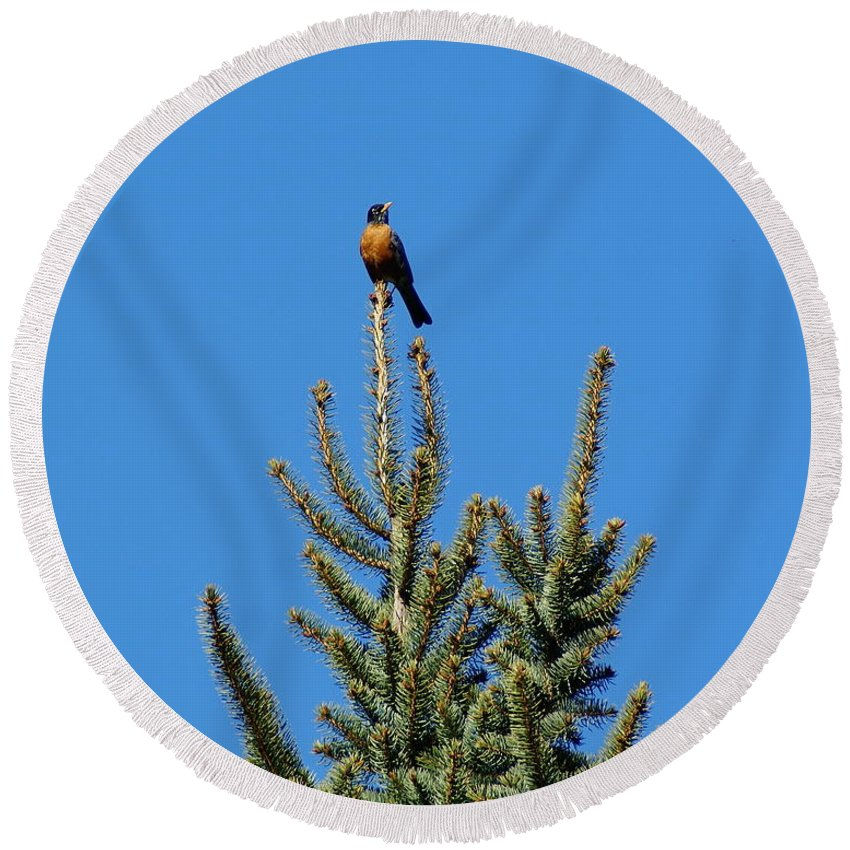Birds Round Beach Towel featuring the photograph Sitting On Top Of The World 2 by Ben Upham III