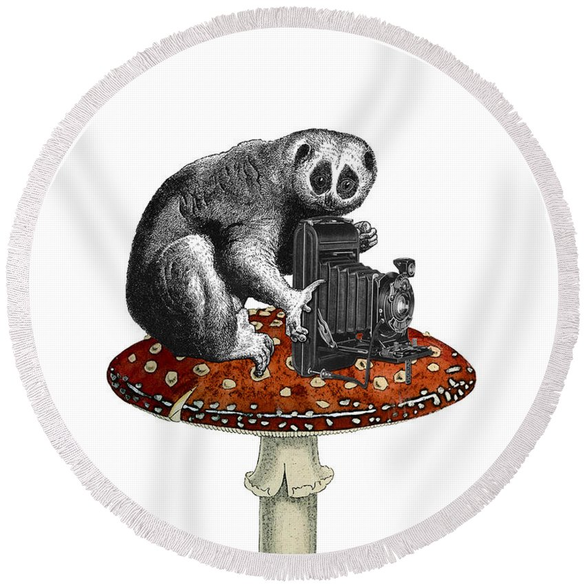 Slow Loris Round Beach Towel featuring the digital art Slow Loris With Antique Camera by Madame Memento