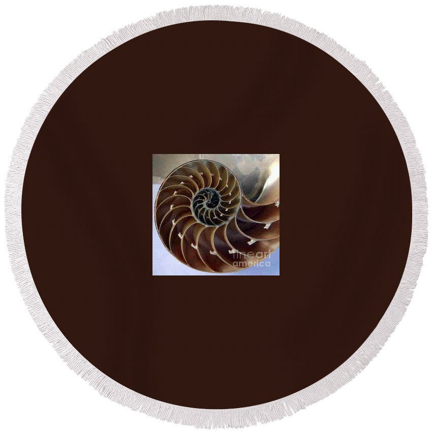 Snail Round Beach Towel featuring the photograph Snail by Dragica Micki Fortuna