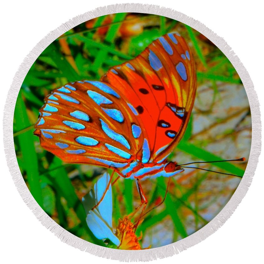 Butterfly Round Beach Towel featuring the photograph Snooty Butterfly by Tim G Ross