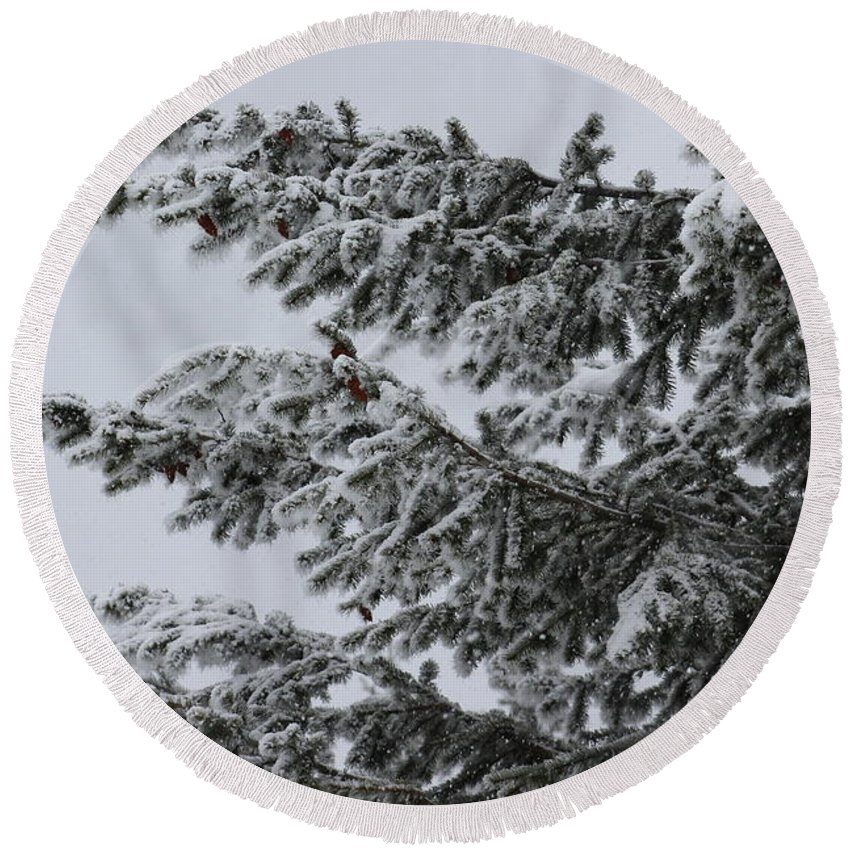Tree Round Beach Towel featuring the photograph Snowfall by LKB Art and Photography