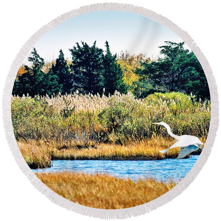 Landscape Round Beach Towel featuring the photograph Snowy Egret-island Beach State Park N.j. by Steve Karol