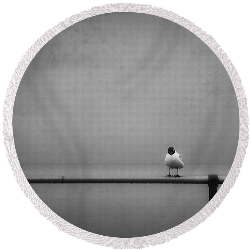 Alone Round Beach Towel featuring the photograph so now that I got you alone how about by Dorit Fuhg