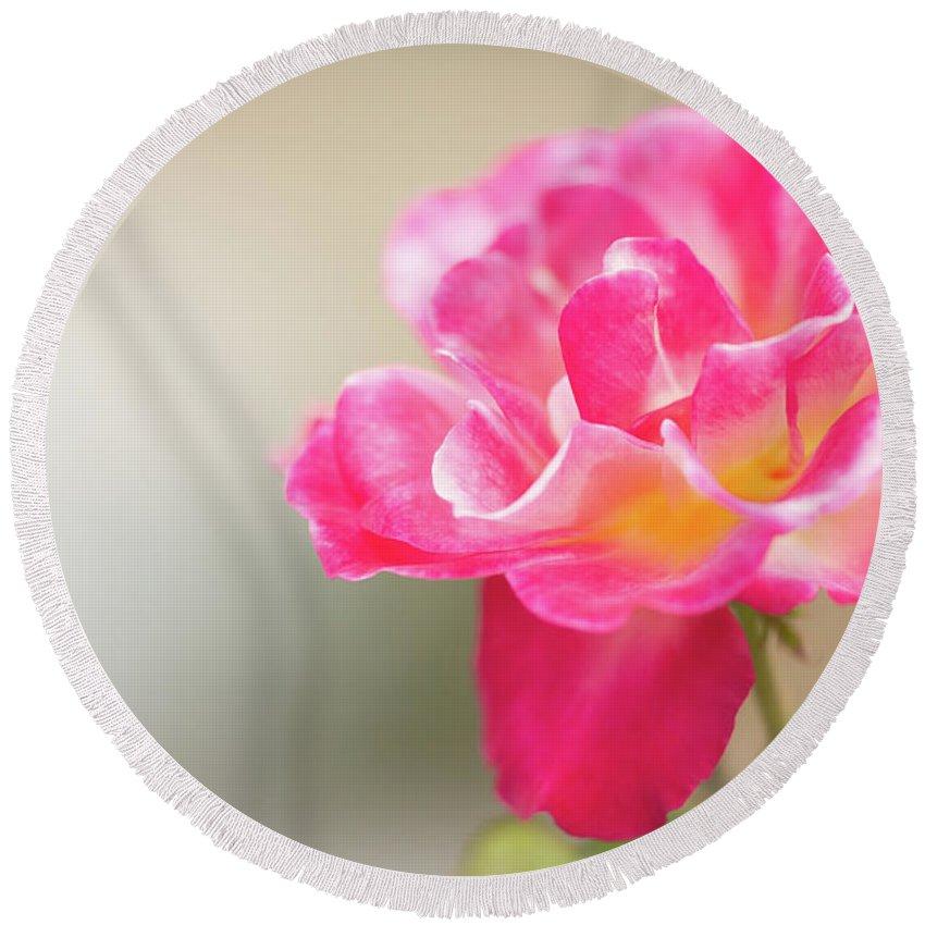 Boynton Beach Round Beach Towel featuring the photograph Soft As A Whisper Of A Hot Pink Rose by Sabrina L Ryan