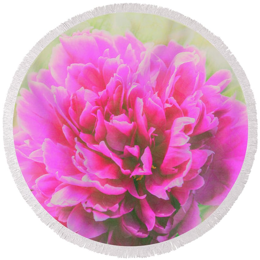 Flowers Round Beach Towel featuring the photograph Soft Peony by Pamela Williams