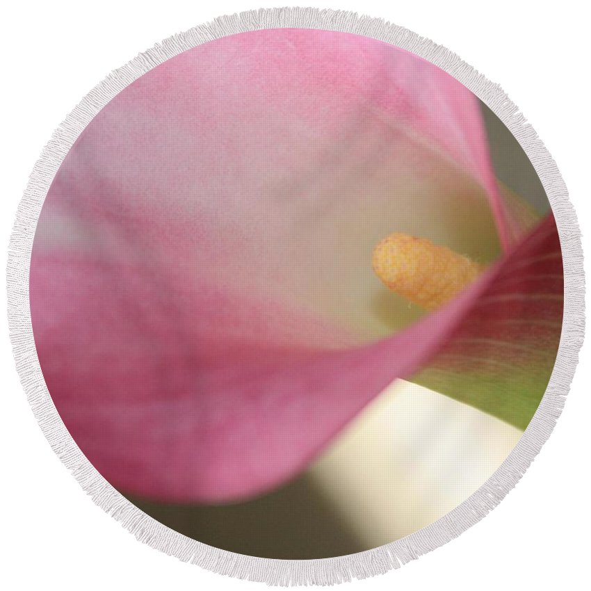 Pink Round Beach Towel featuring the photograph Soft Pink Calla Lily by Carol Groenen