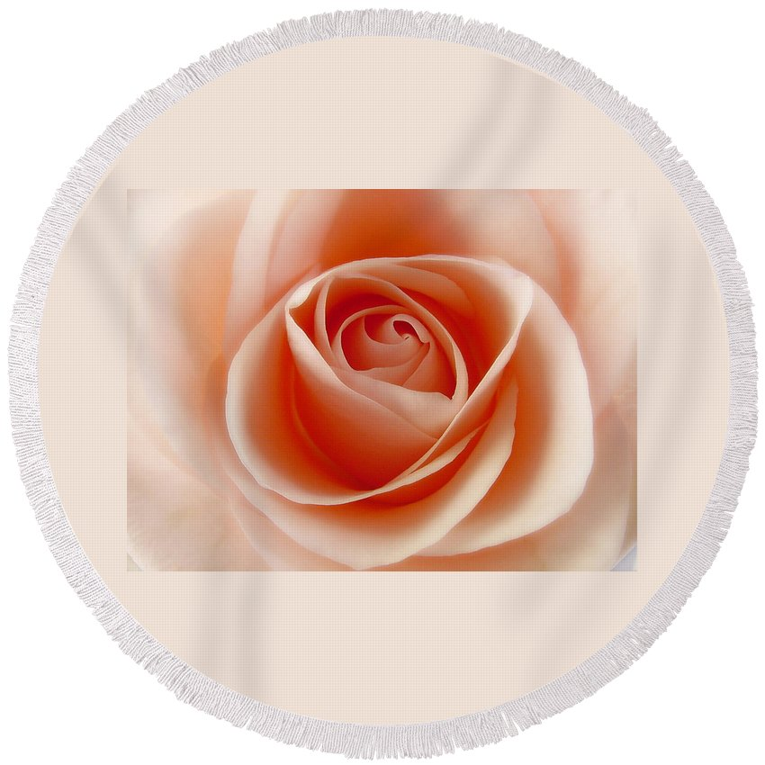 Rose Round Beach Towel featuring the photograph Soft Rose by Steve Williams
