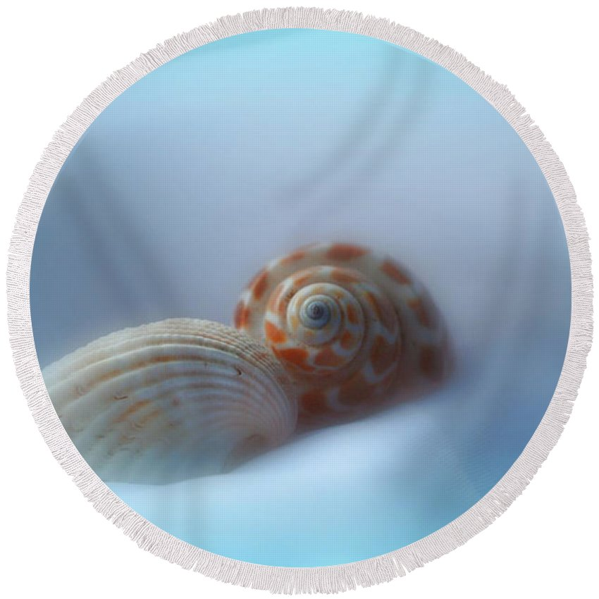 Nature Round Beach Towel featuring the photograph Soft Shells by Linda Sannuti