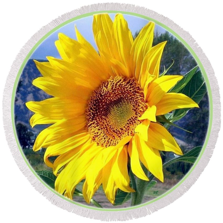 Sunflower Round Beach Towel featuring the photograph Solid Sunshine by Will Borden