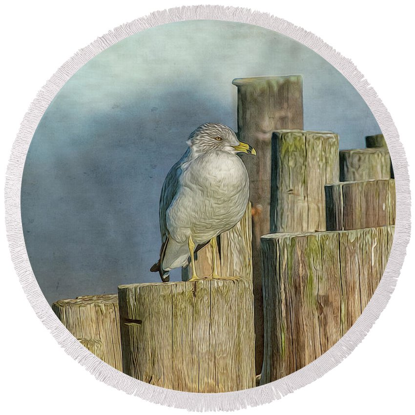 Seagull Round Beach Towel featuring the photograph Solitary Gull by Cathy Kovarik
