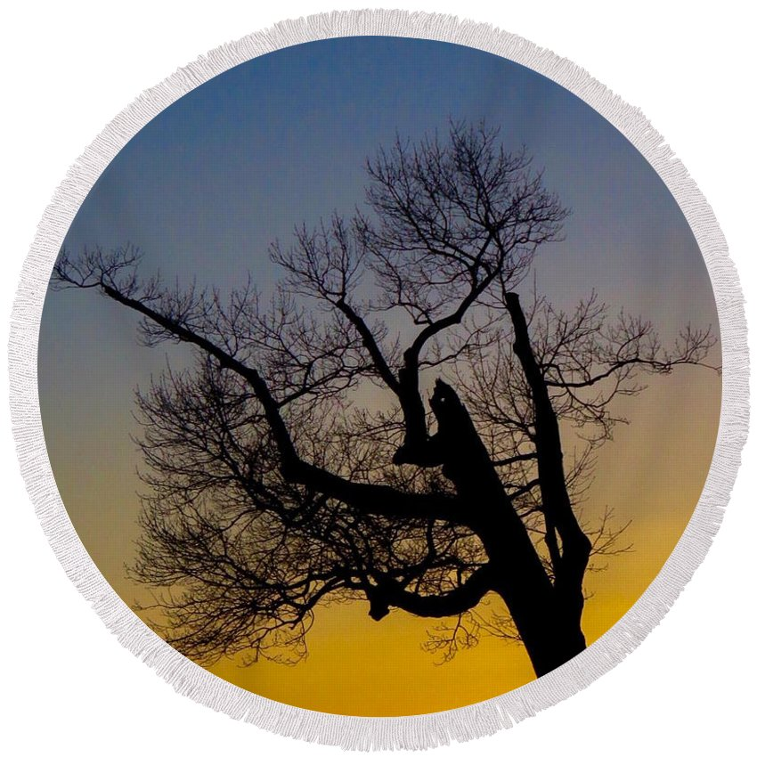 Tree Round Beach Towel featuring the photograph Solitary Tree At Sunset by Beth Myer