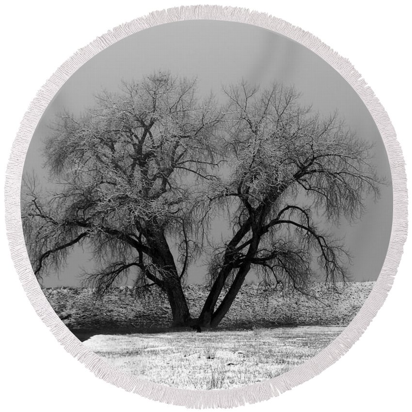 Winter Round Beach Towel featuring the photograph Solitude by Marilyn Hunt