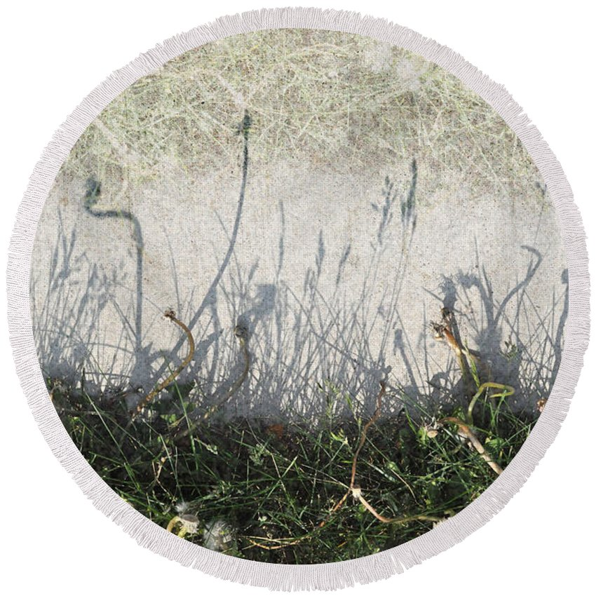 Weeds Round Beach Towel featuring the photograph Some Peoples Weeds by Tim Nyberg