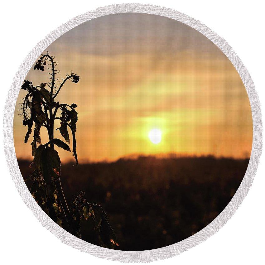Sonnenuntergang Blume Flowwer Sky Himmel Round Beach Towel featuring the photograph Sonnenuntergang by Scimitarable