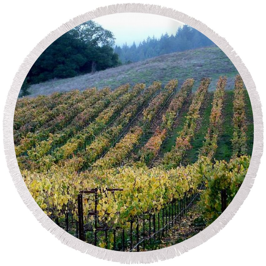 Vineyards Round Beach Towel featuring the photograph Sonoma County Vineyards Near Healdsburg by Charlene Mitchell