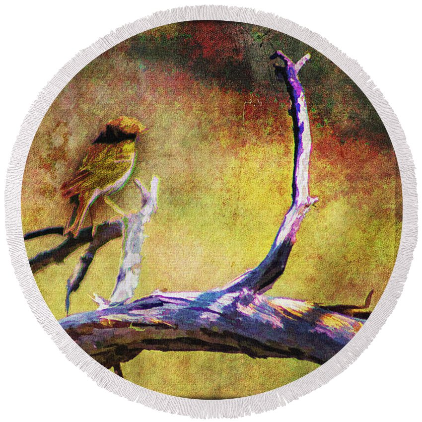 Pictorial Round Beach Towel featuring the photograph Sonoran Desert Dreamscape by Roger Passman