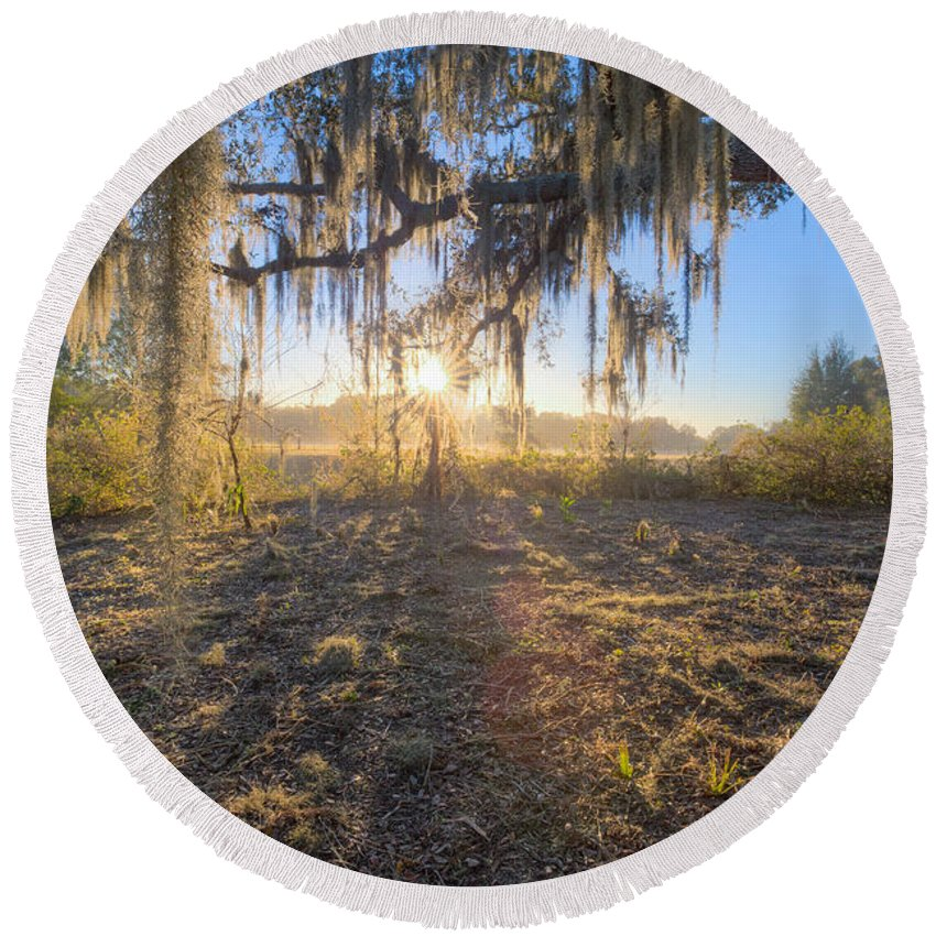 Oaks Round Beach Towel featuring the photograph Spanish Moss Sunrise by Ronald Kotinsky