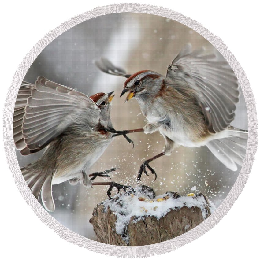 Tree Round Beach Towel featuring the photograph Sparrows by Mircea Costina Photography