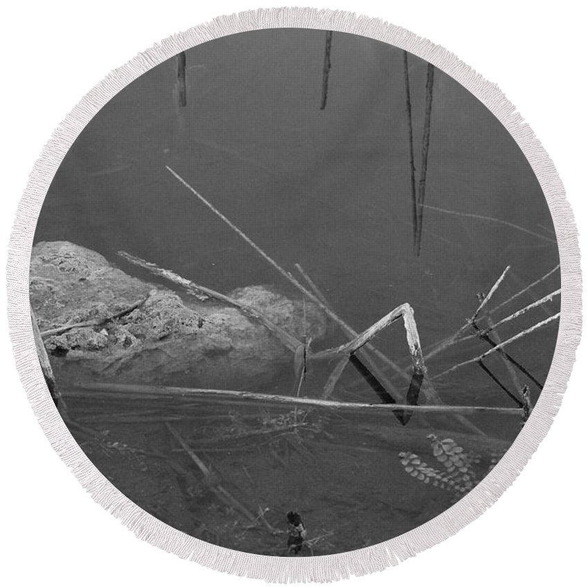 Black And White Round Beach Towel featuring the photograph Spider In Water by Rob Hans