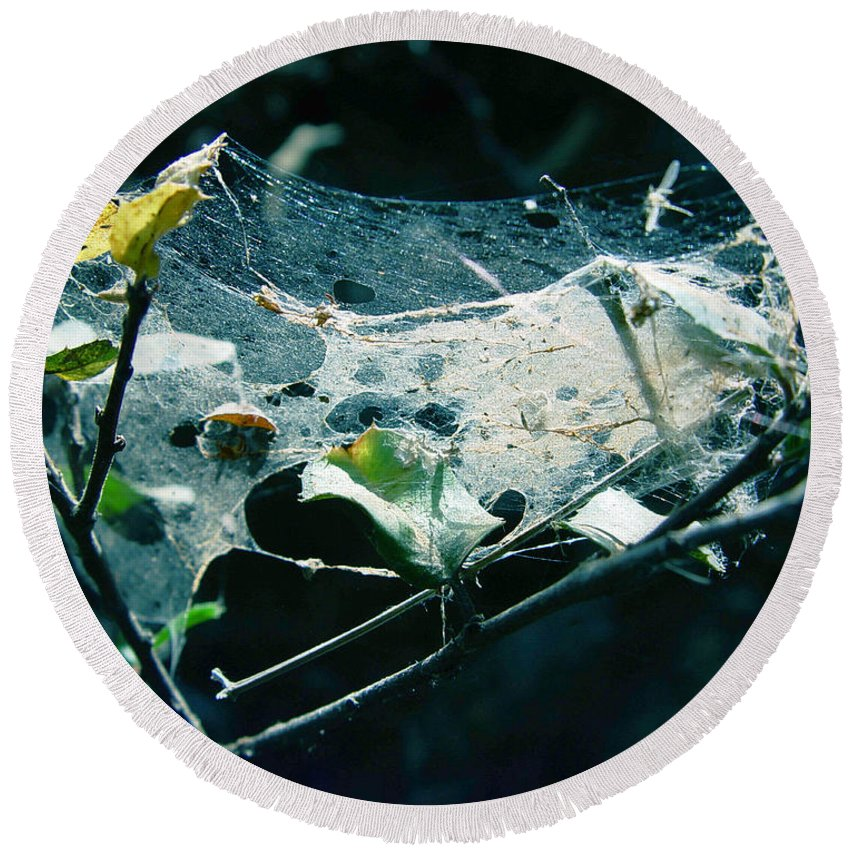Spider Round Beach Towel featuring the photograph Spider Web by Peter Piatt