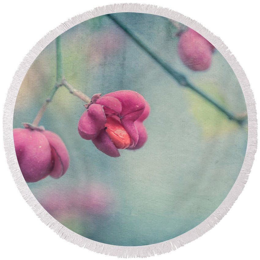 Spindle Round Beach Towel featuring the photograph Spindle Tree by Elisabeth De vries