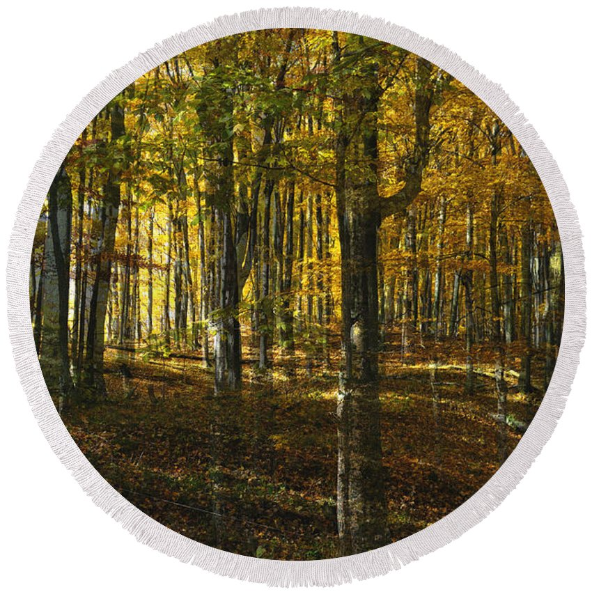Woods Round Beach Towel featuring the photograph Spirits In The Woods by Tim Nyberg