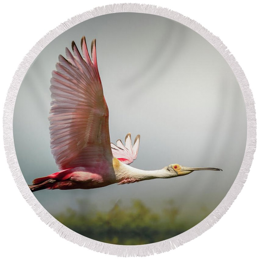 Animal Round Beach Towel featuring the photograph Spoonbill In Foggy Bayou by Robert Frederick