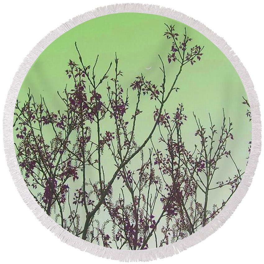 Elegant Round Beach Towel featuring the photograph Spring Branches Mint by Marisela Mungia